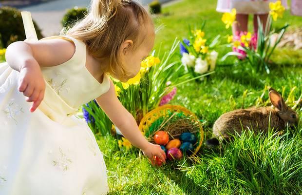 Easter egg hunt with bunny destin