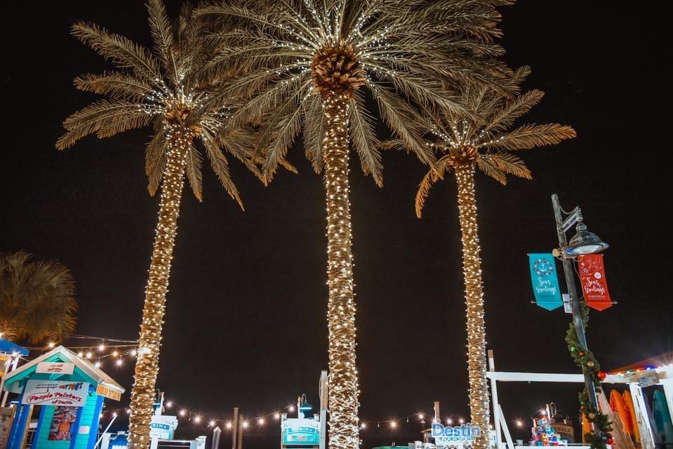 harborwalk destin palm tree lights